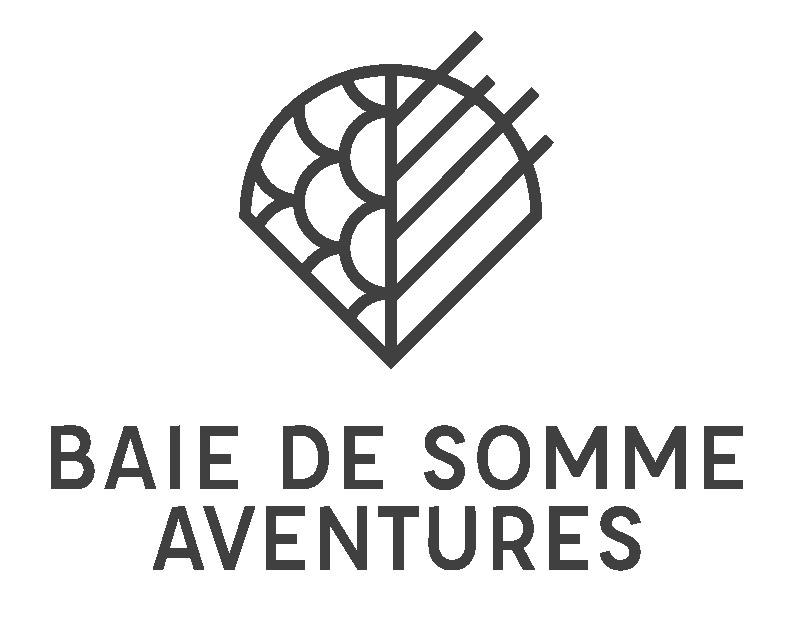 logo bdsa