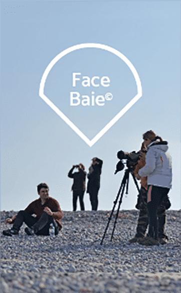 face_baie_img